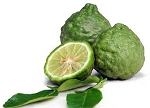 Kaffir Lime Leaf Essential Oil (EO45)