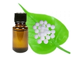 White Camphor Essential Oil (EO54)