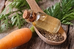 Carrot Seed Oil - PCARROT