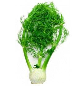 Sweet Fennel Essential Oil (EO42)